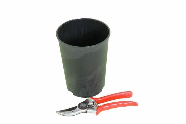 Diepe Ronde Palmpot 2,0 litre